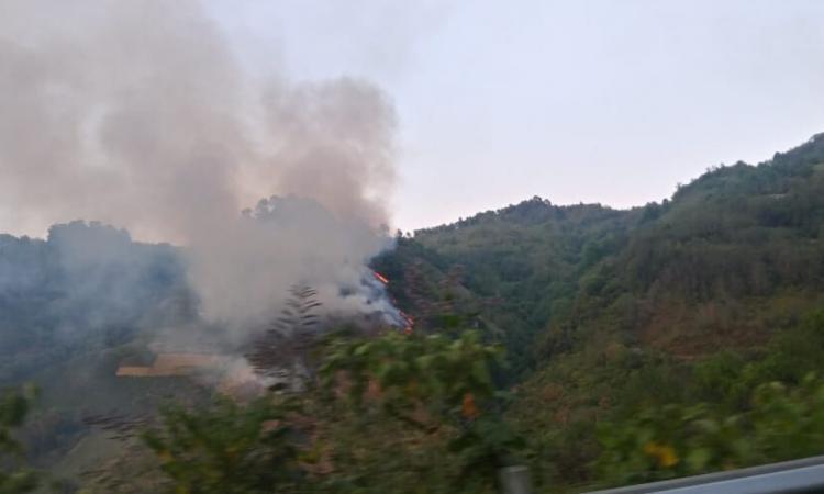 Puebla, sexto con más incendios forestales