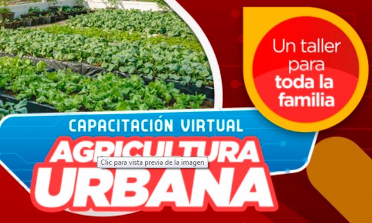 Lanzan capacitación sobre Agricultura Urbana