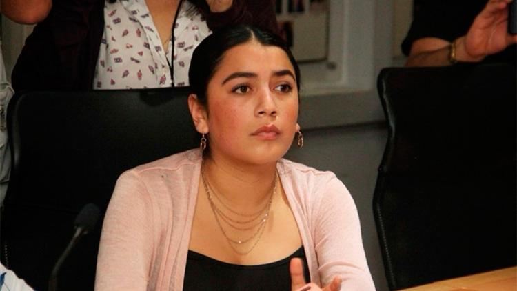 Vianey García Romero, presidenta de la Comisión de Gobernación y Puntos Constitucionales