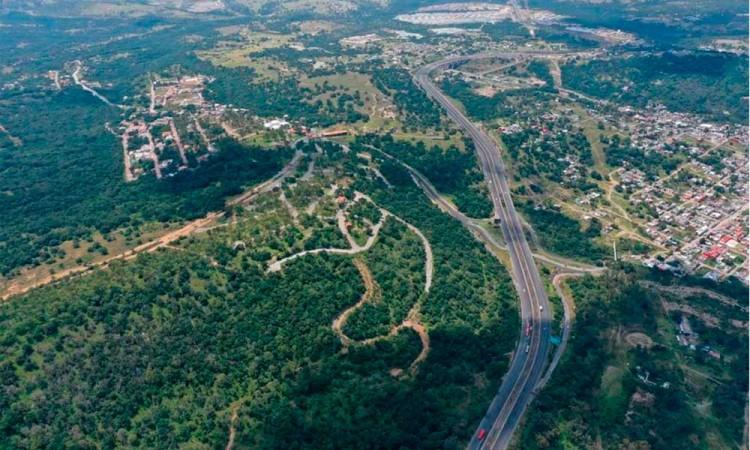 Exigen un decreto para proteger 42 hectáreas en Flor del Bosque