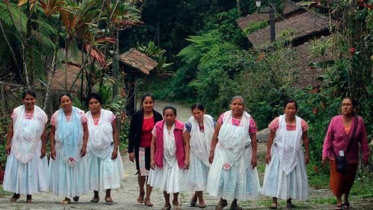 Piden que campañas para cáncer de mama se traduzcan a lenguas indígenas