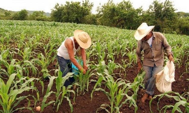 Engañan a campesinos con que se lanzan bombas anti granizo, dice Barbosa