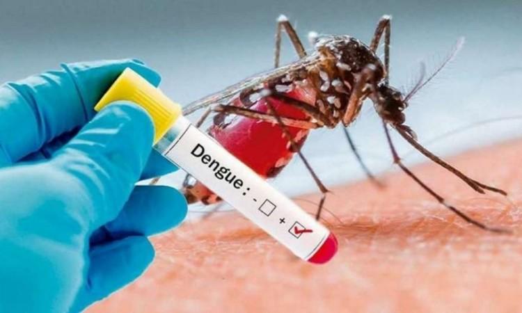 Por dengue falleció un poblano, reporta Salud