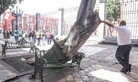 Obras del Centro Histórico responden a la emergencia sanitaria, aseguran