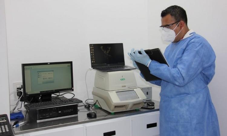 Ponen a disposición de la sociedad laboratorio de Diagnóstico Molecular para pruebas PCR para la detección de Covid-19