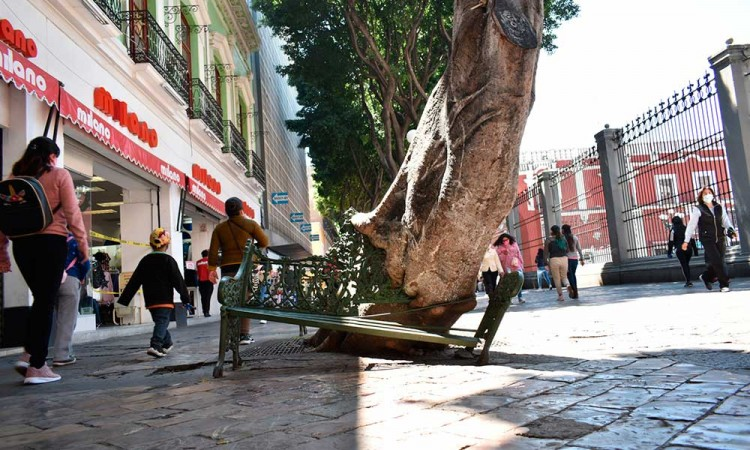Apuestan que remodelación de corredor 5 de Mayo detone el Turismo