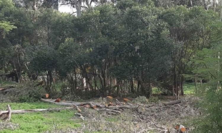 Es obligación de las autoridades restaurar y proteger dicha zona.