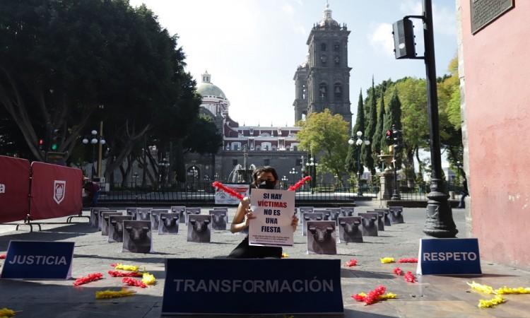 Movimiento contra la Tauromaquia exige prohibición de la fiesta brava en Puebla