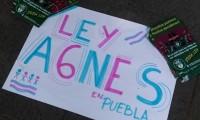 ¡TIC-TAC! Se agota el tiempo y la Ley Agnes no se ha legislado en Puebla