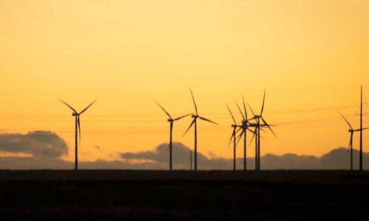 Defiende Saúl Huerta iniciativa de reforma en materia energética para México