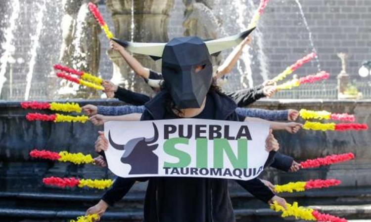 Seguiremos luchando porque se prohíban corridas de toros en Puebla: Animal Héroes