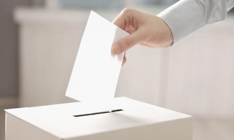 Ediles y diputados que busquen reelección no deberán dejar cargo: TEPJF