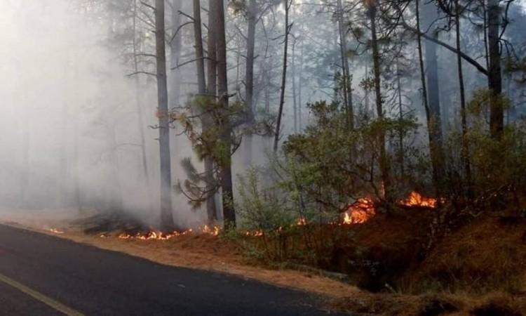 Incendios forestales afectan aire de Puebla