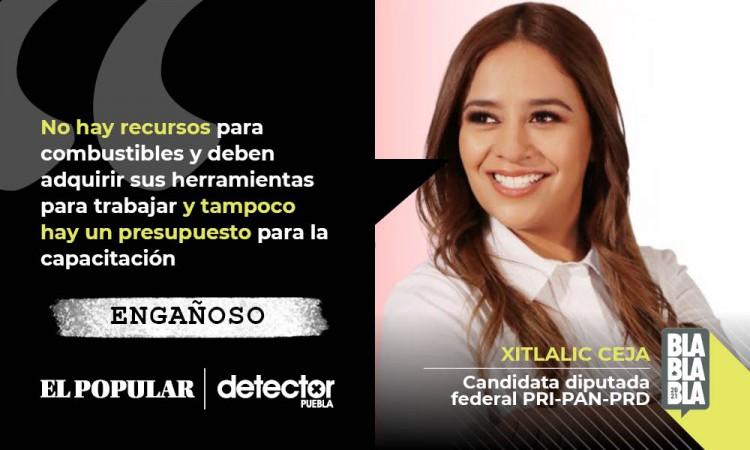 Engañoso que en México no hay recursos ni presupuesto para combatir incendios forestales, como dijo Xitlalic Ceja