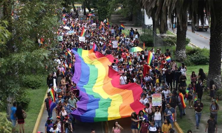 Comunidad LGBT+ preocupados por impugnación contra Ley Agnes