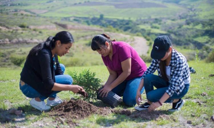Imparte BUAP Diplomado en Educación para el Desarrollo Sostenible