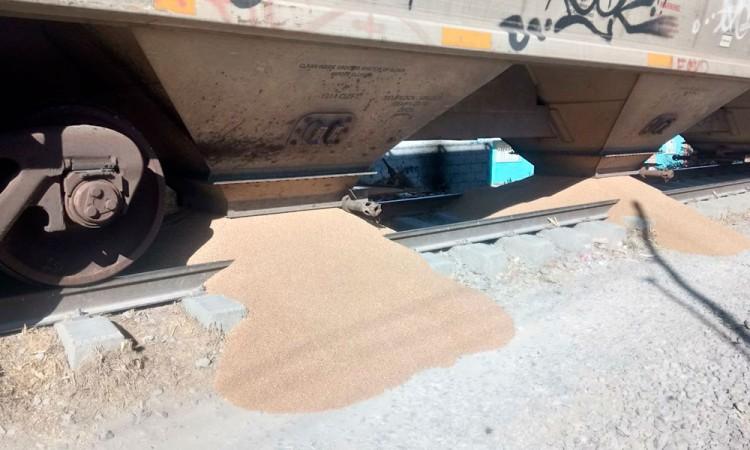 Saquean tren con trigo en Xochimehuacan