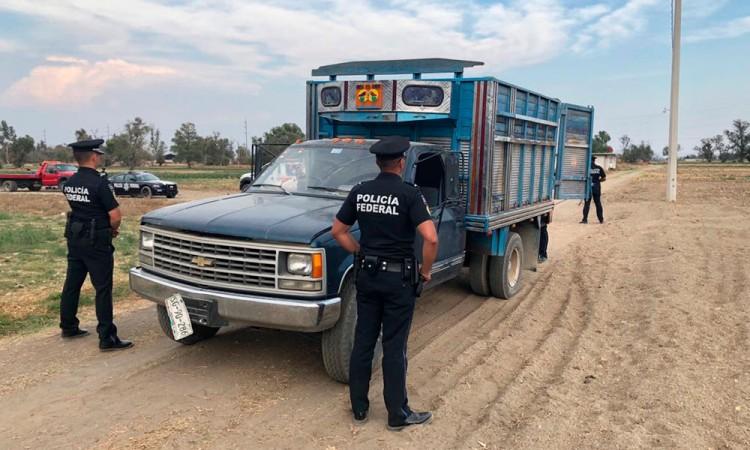 Enfrentan huachicoleros a policías federales