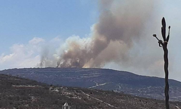 Incendio en cerro de Caltepec afecta Reserva de la Biosfera