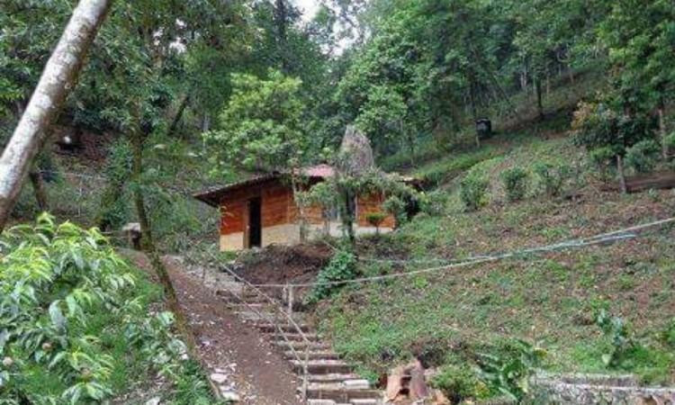 Asesinan a velador de ecoturístico en Huauchinango