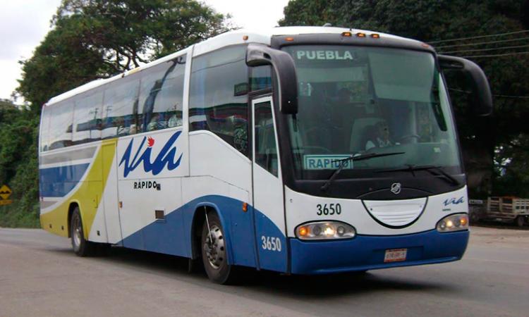 Sujetos armados asaltan autobús línea Vía en la federal Amozoc-Nautla