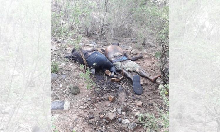 Hallan cuerpos con impactos de bala en la cabeza en Ajalpan