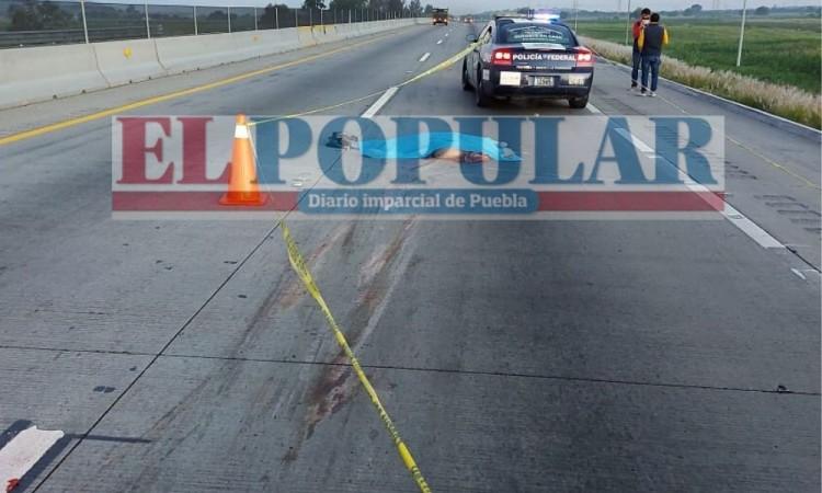 Hombre muere arrollado en la autopista Puebla-Orizaba