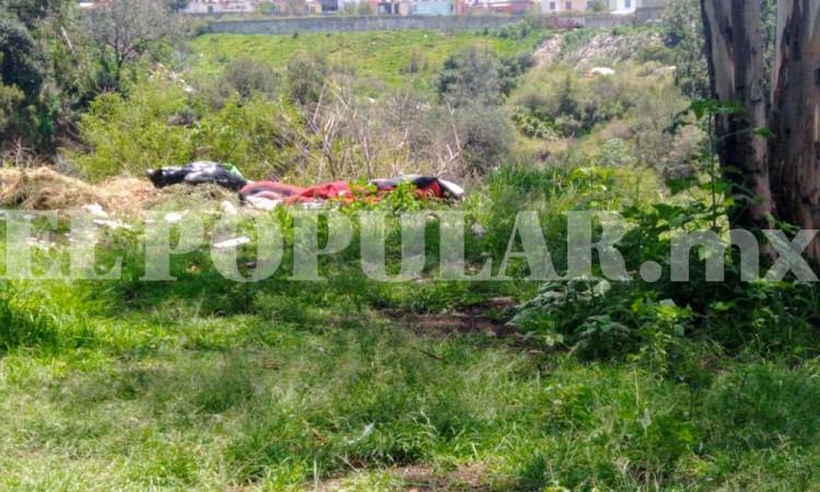 Por perros callejeros, dan con cuerpo desmembrado en Bosques de San Sebastián