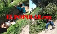 Encuentran cuerpos en campos de cultivo en Tepeaca