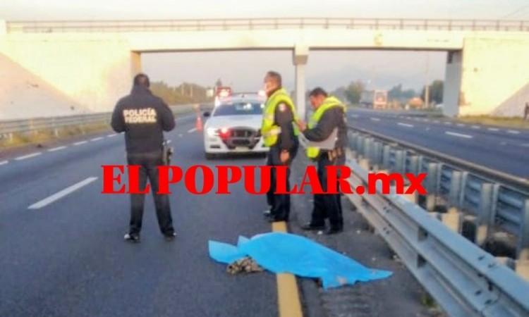 Hombre intenta atravesar la autopista Puebla-Orizaba pero muere atropellado