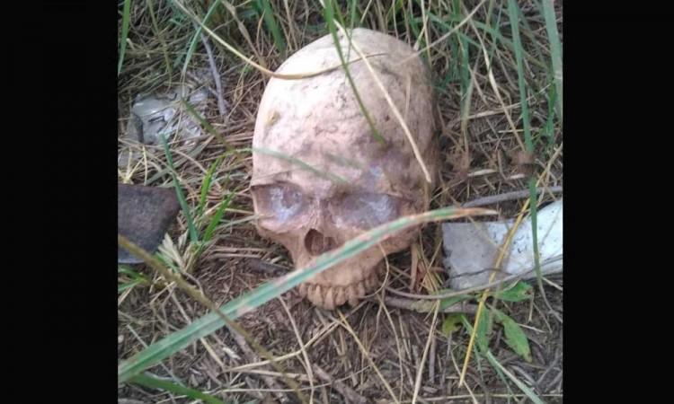 ¡Puebla se adorna sola para Halloween! Vecinos encuentran cráneo abandonado
