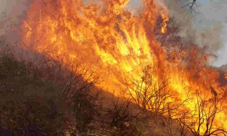 Los vulcanos lograron sofocar el fuego con chorros de agua a presión.