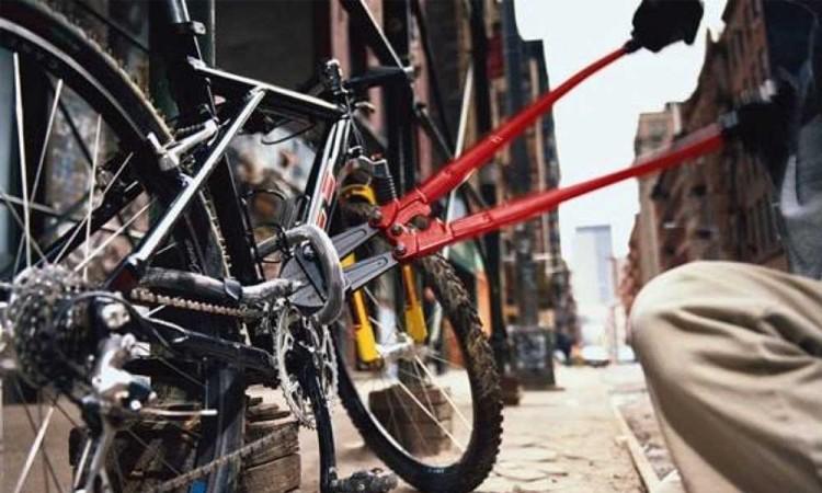 Vigilantes del fraccionamiento Hacienda Santa Clara detienen a dos jóvenes por robo de bicicleta