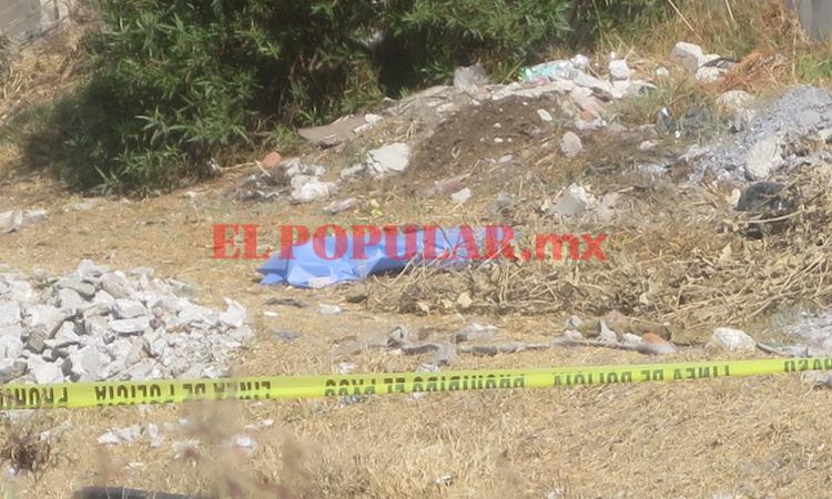 Asesinan a bebé lo queman y abandonan embolsado en Santa Margarita