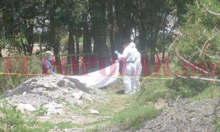 Hallan cadáver siendo devorado por perros en Santa María Xonacatepec.